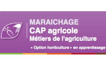 Nouveau CAP en apprentissage au CFC Nantes Loire et Vignoble de Briacé !